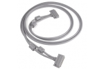 C100MMS-2M  Cable, shielded, 100-conductor, male to male, 2 m